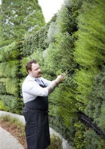 herb wall garden 2